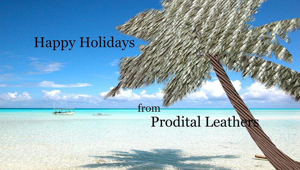 Happy Holidays from Prodital!